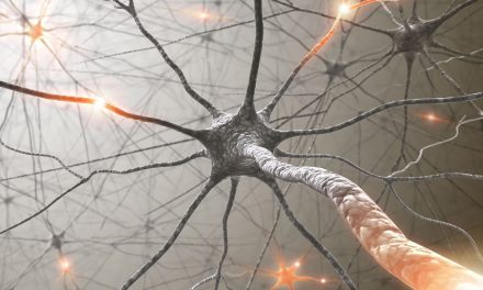 Intel has succeeded in emulating the 'thinking' power of 100m brain neurons