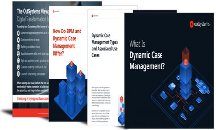 Beginner's guide to dynamic case management